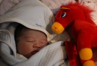 The Washington Post: китайские пары торопятся зачать ребенка до наступления несчастливого года Овцы