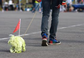 СМИ: Китайские подростки выгуливают капусту из-за одиночества