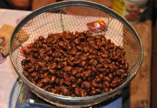 Китайские крестьяне зарабатывают более $150 за ночь на сборе цикад для ресторанов