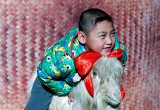 Фото: мир празднует китайский Новый год