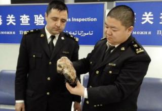 В аэропорту Урумчи задержали контрабанду медвежьих лап
