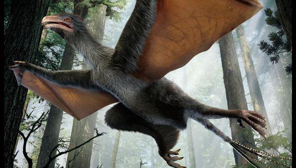 динозавр бэтмен китай