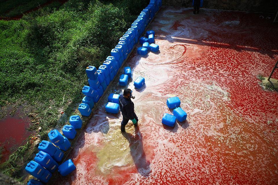«Кровавая река» в Шэньчжэне экология китай