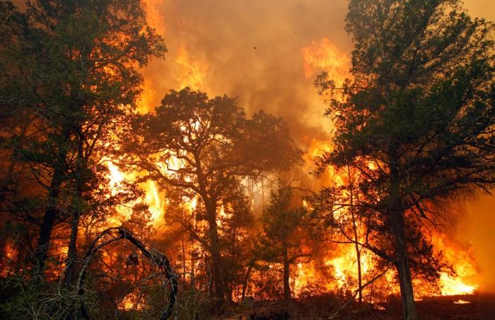 Лесные пожары из Забайкалья перекинулись в Китай