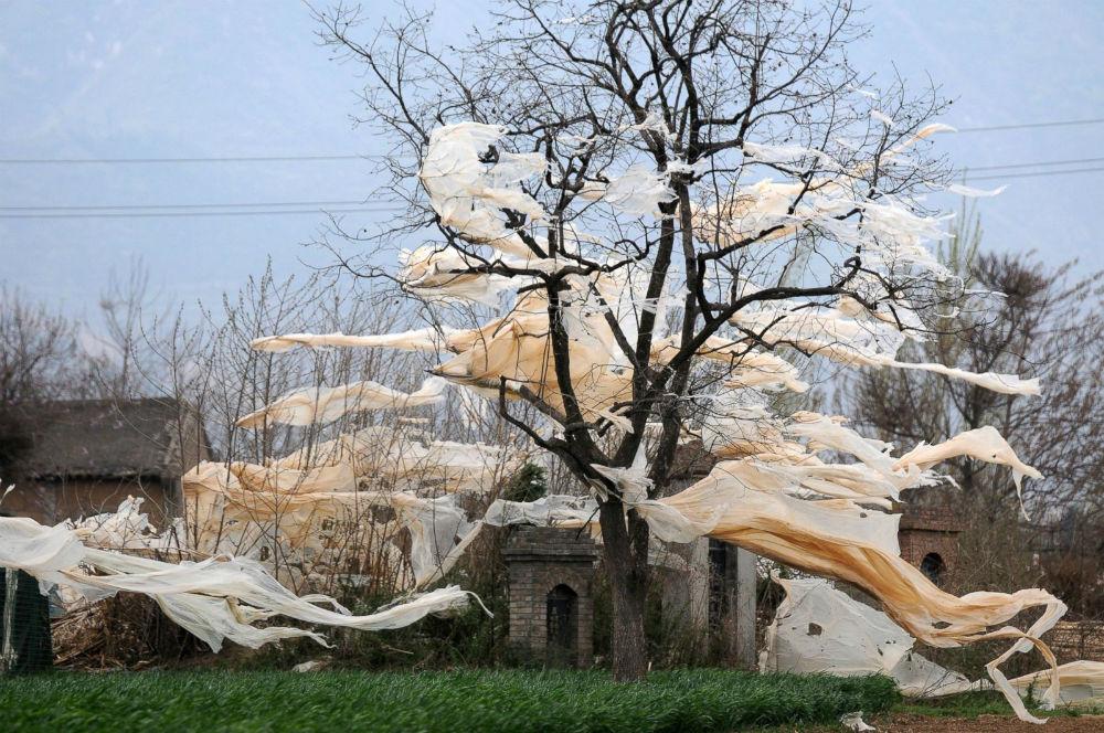 штормовой ветер в Китае