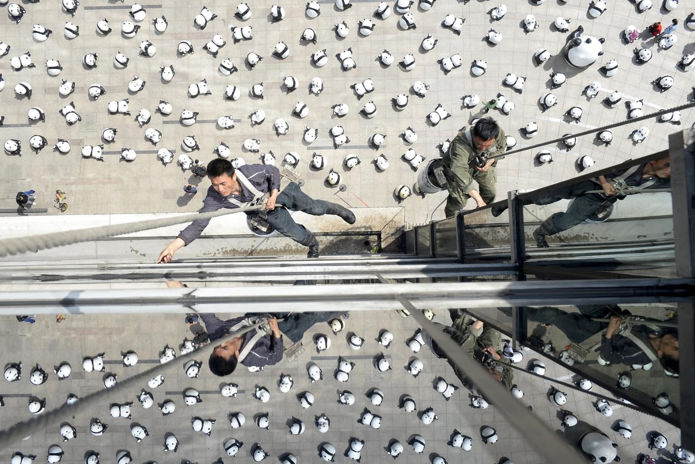 Рабочие моют стекла офисного здания, на площади перед которым проводится инсталляция из почти 300 скульптур панд, Тайюань, провинция Шаньси. Фото: Jon Woo/Reuters