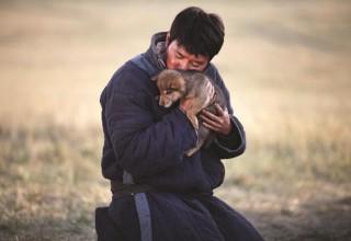 В Москве и Калининграде пройдут фестивали китайского кино