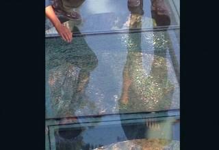 В Китае новый стеклянный мост треснул под ногами туристов