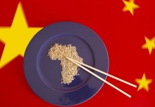 От париков до приматов: 7 неожиданных цифр китайско-африканской торговли
