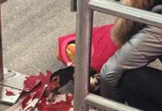 Китаянка зарезала утку на вокзале из-за запрета провоза живых животных
