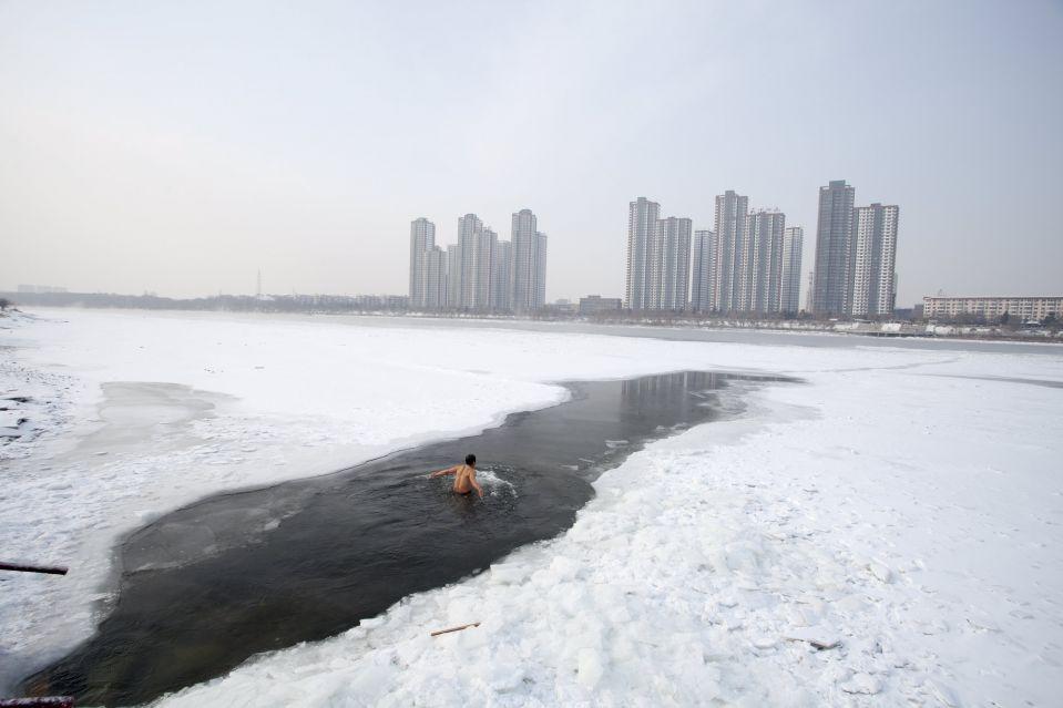 Моржи в Китае