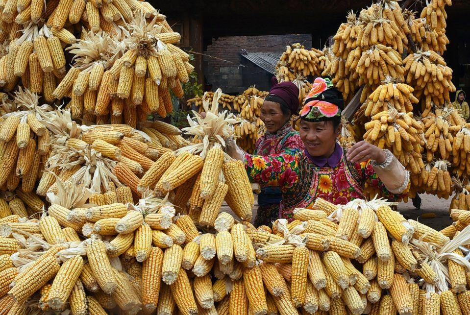 Женщины народности И , провинция Юньнань.