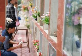 В Китае разработано руководство по экологическим похоронам