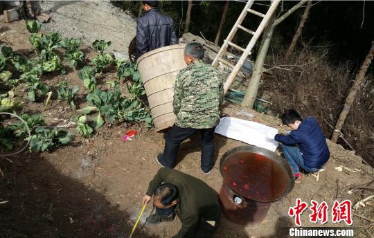 Фото: chinanews.com