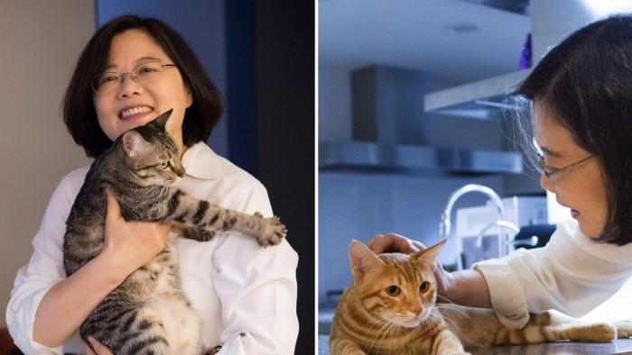 Президент Тайваня Цай Инвэнь и ее коты Сян Сян (слева) и А-Цай.