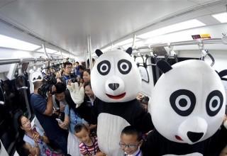 В китайском метро запустили панда-поезд