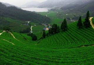 В Китае создадут экспериментальные экологические зоны