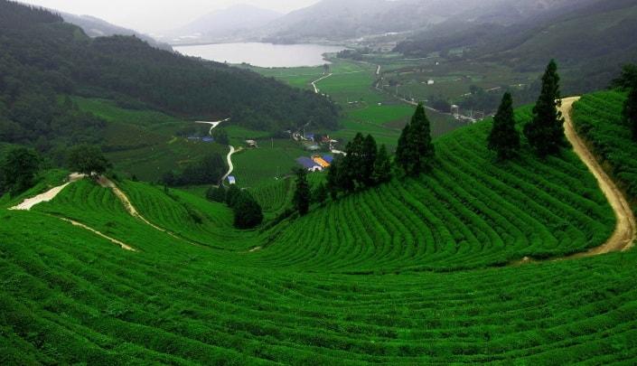 Фуцзянь, КНР