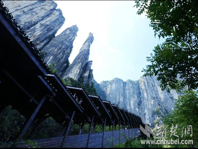 longest_sightseeing_escalator2