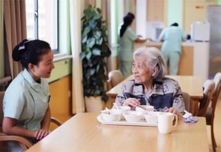 Китай: пик старения населения придется на 2055-й