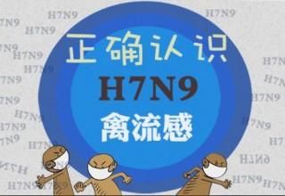 Китай: птичий грипп-мутант продолжает мутировать