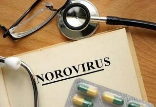 Почти 400 детей госпитализированы при вспышке норовируса в одной из школ КНР