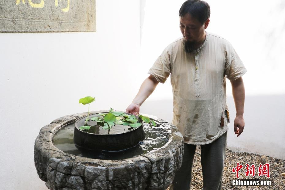ancient_lotus_seed_come_back_live_china_3