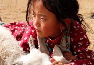 Первый фильм на тибетском языке показали за пределами Китая