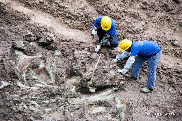 Раскопки динозавров в Китае