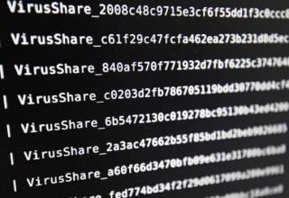 Китайские власти предупредили пользователей интернета о новой вирусной атаке «Petya»