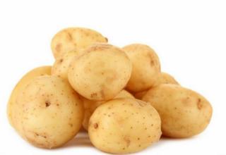 РФ и КНР выведут новую картошку на экспорт