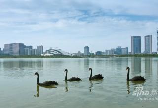 В Китае появился беспилотный катер-спасатель