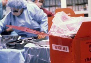 В Китае начался бум донорства органов