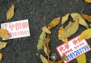 Китайская школьница продала свои яйцеклетки за $2000 и чуть не погибла