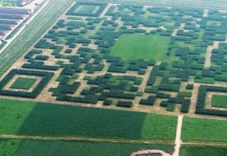 Китайская деревня превратила поле в гигантский QR-код для привлечения туристов