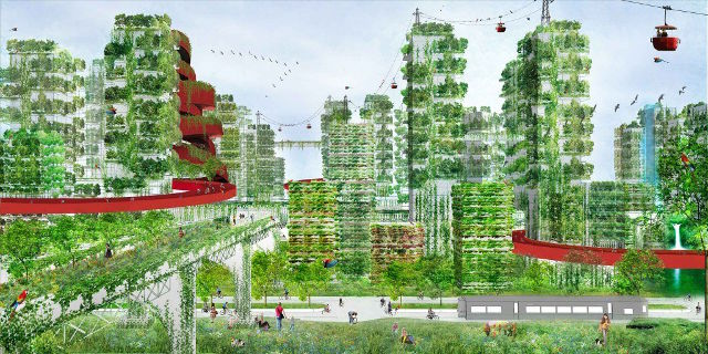 forest_city23