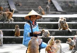 «Матерь обезьян» — самый известный гид китайского заповедника Лунху