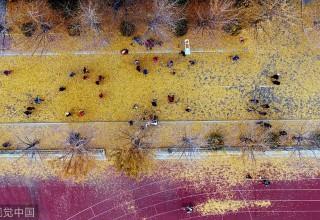 Китай в фотографиях за неделю (23-29 октября)