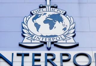 Преступница номер 27 в китайском списке Интерпола сдалась властям