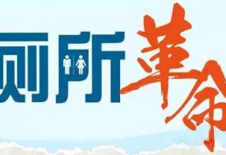 Председатель КНР возглавит «туалетную революцию»