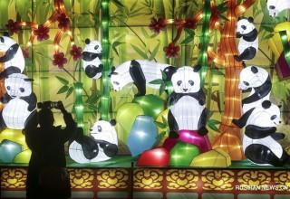 Китай в фотографиях за неделю (11-17 декабря)