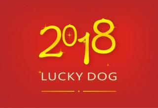 Китай-2018: что несет год желтой Собаки