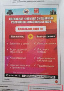 китайско-российские браки объявление