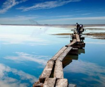 китай озеро поян природа