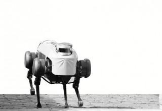 Китай создал робо-коня для исследований других планет
