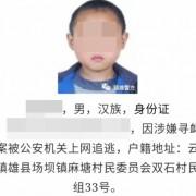 Китайская полиция разыскивала преступников по их детским фотографиям