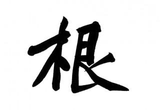 История одного иероглифа: коренной 根 gen