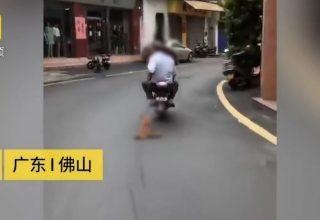 Китайцы привязали к мотоциклу собаку и протащили ее по городу