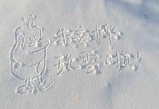 Зимний креатив: на китайской торговой онлайн-площадке Taobao продают фото надписей на снегу