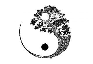 Необычные китайские слова: единство противоположностей